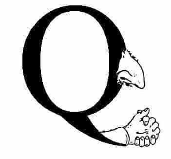 Q the fuck...