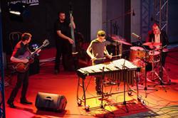 Vid Jamnik Quartet