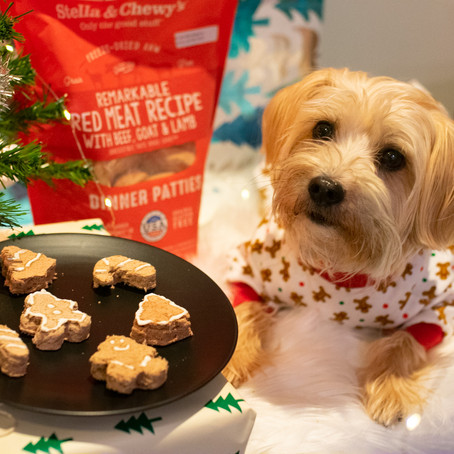 """No Bake """"Cookies"""" with Stella and Chewy's"""