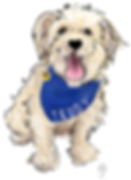 Teddy's Logo-Cropped.png