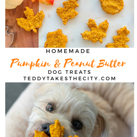 Homemade Pumpkin and Peanut Butter Dog Treats