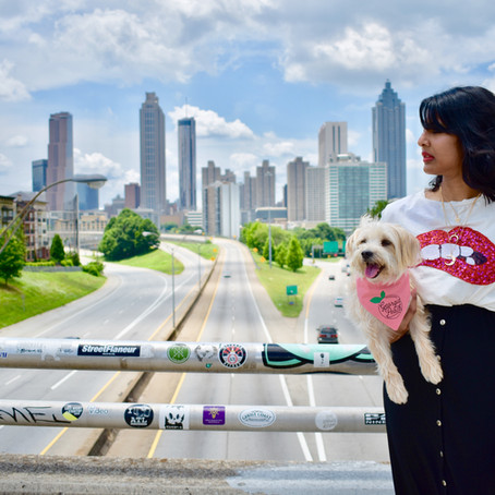 Iconic Places to take photos with your dog- Atlanta Edition