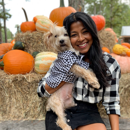 Dog Friendly Fall Activities in Georgia