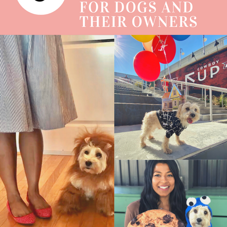 3 DIY Halloween Costume Ideas For Dogs and Their Owners
