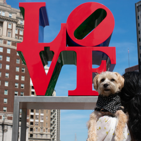 Travel Guide: 24 hours in Philadelphia with your Dog