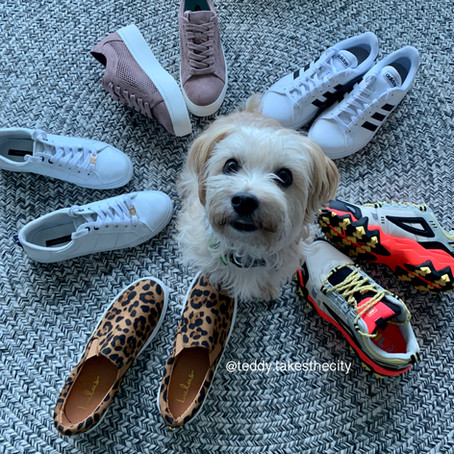 My Favorite Sneakers to Wear on Dog Walks