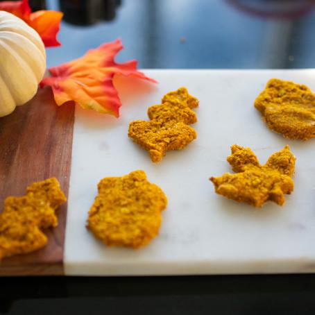 Pumpkin & Oats Dog Treats for Thanksgiving