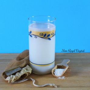Lait (breuvage) de coco maison {Végane, cru, sans gluten, low ox}