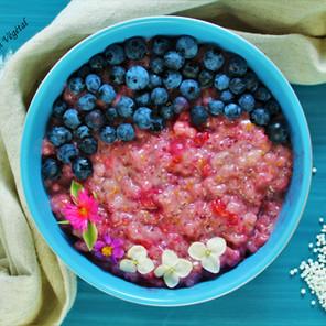 Pudding de tapioca (nature ou à la framboise) {Végane, sans noix, sans gluten, hypotoxique}