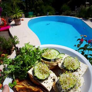 Manger 100% végétal dans le sud-est de la France