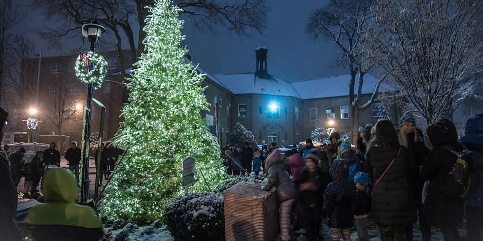 Holiday Market & Tree Lighting