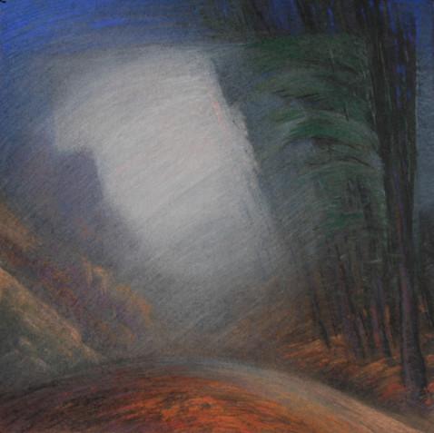Pastel on cardborad - 80X80 - 2009