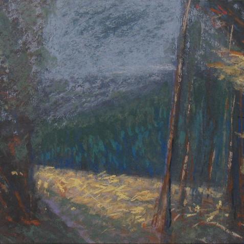 Pastel on cardborad - 15X45 - 2011