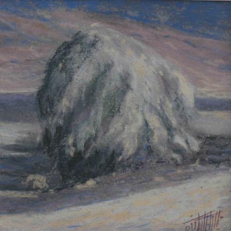 Pastel on cardborad - 15X15 - 2011