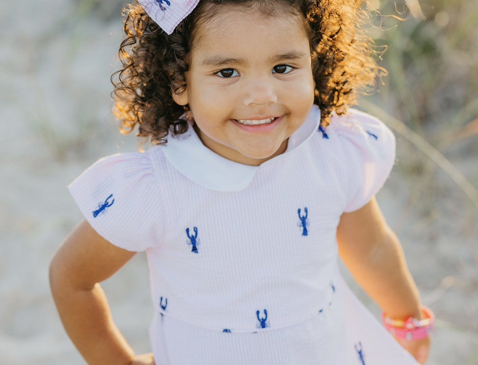 Pink and White Seersucker Girl's Dress with Navy Embroidered Lobsters and Peter