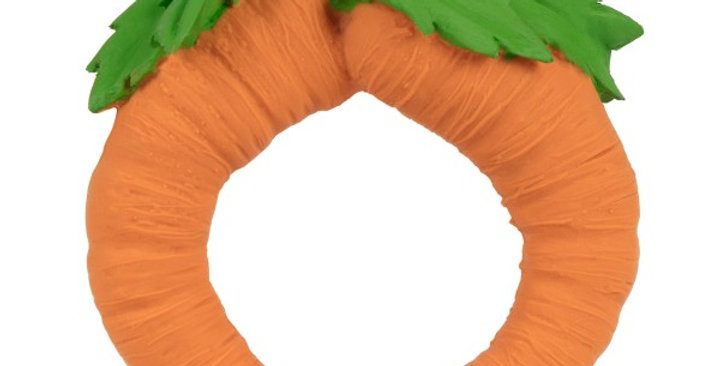 Cathy the Carrot