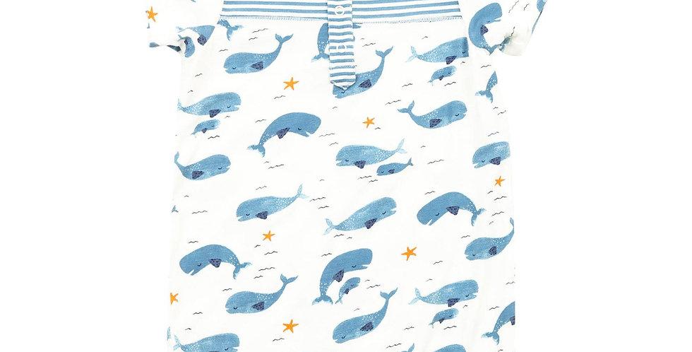 Whale Pod Henley Shortall