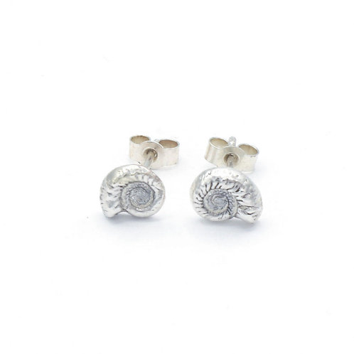 Ammonite Stud Earrings