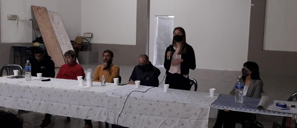 panel de profesionaloes2