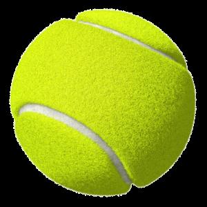 Tennis-Ball-300x300.png