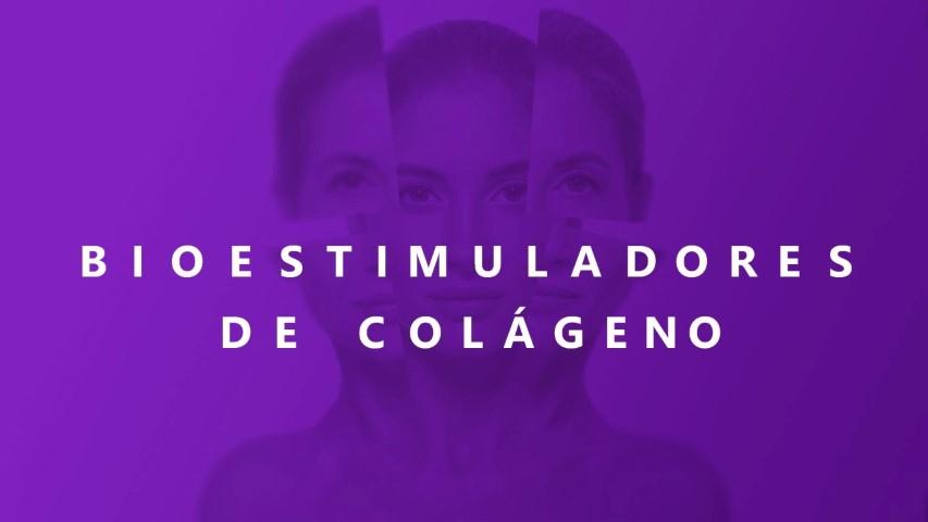 Dra Priscila Siqueira