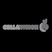 cellavision_logo.png