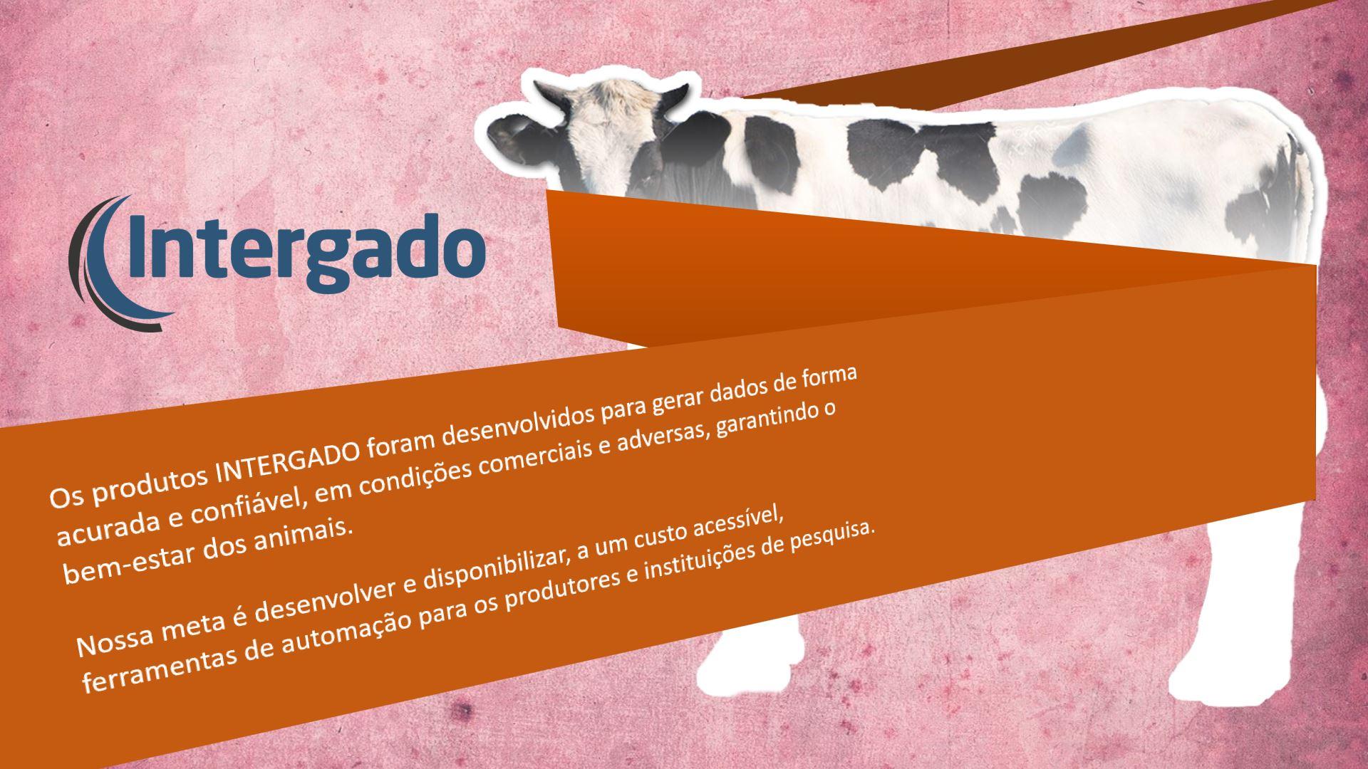 intergado_faqzenda_07