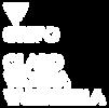 logo_CLARO_VICUÑA_PNG.png