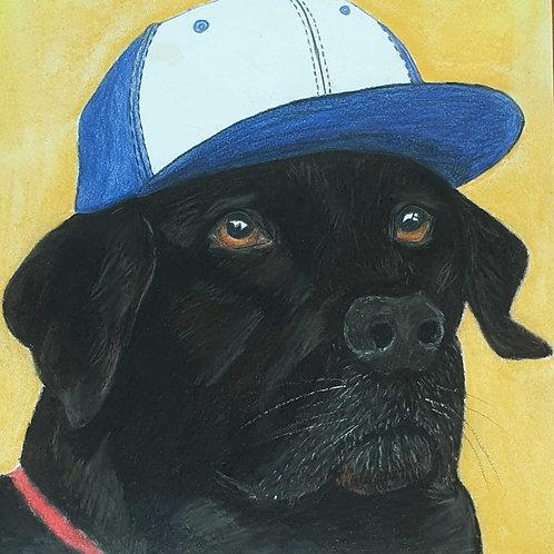 Pet Portrait (Custom)