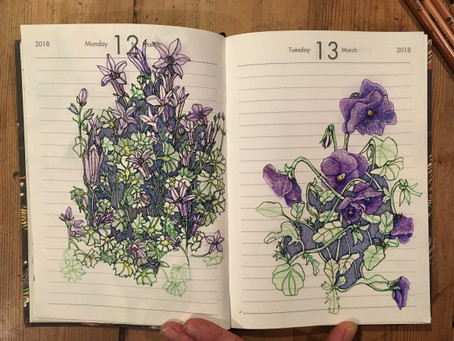 Drawing Spring Plants and Flowers Workshop – 7th March 2020 Jo