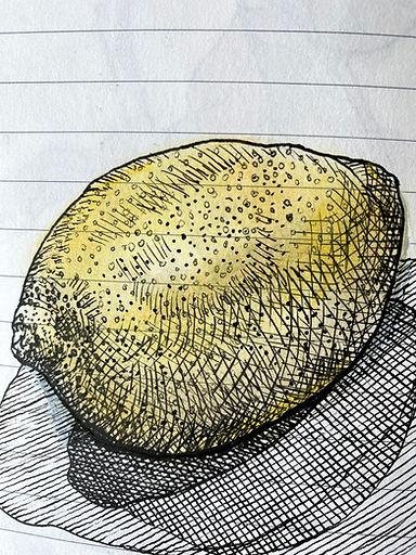 Cross hatch lemon square.jpg