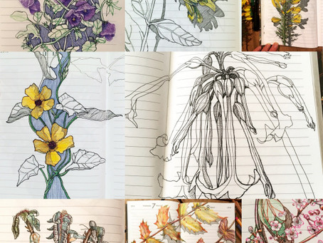New Art Journaling and Drawing Workshops coming up!