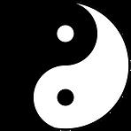 Polarität, Spiritualität und Bewusstsein