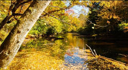 Beautiful fall river picture