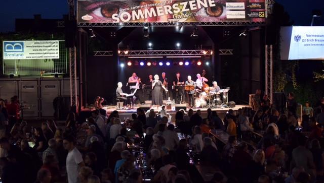 Sommerszene Gänserndorf