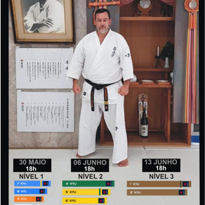 Curso preparatório para exame de faixa com Sensei Henrique Martinicorena