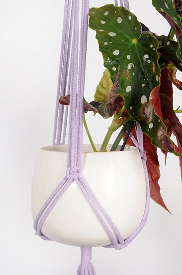 Lavender Plant Hanger
