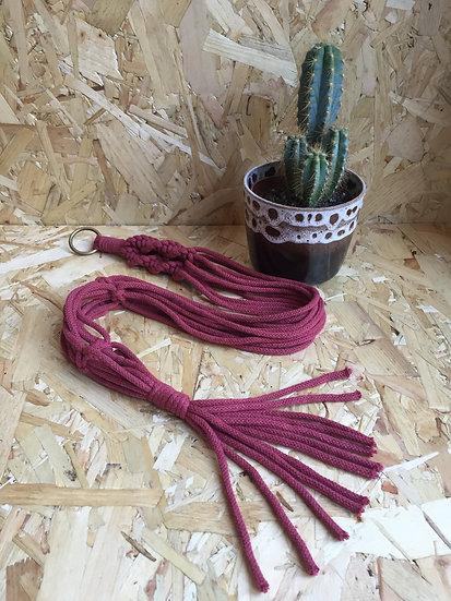 Berry Plant Hanger