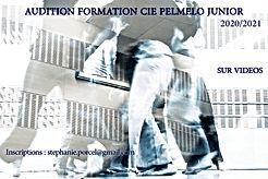 Audition Cie Pelmelo Junior 2020.jpg