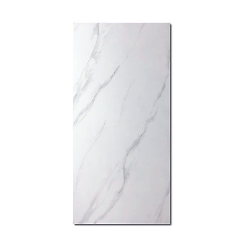 Dream White 2'X4' Tile