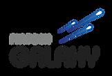 Fintech_Galaxy_logo-02.png