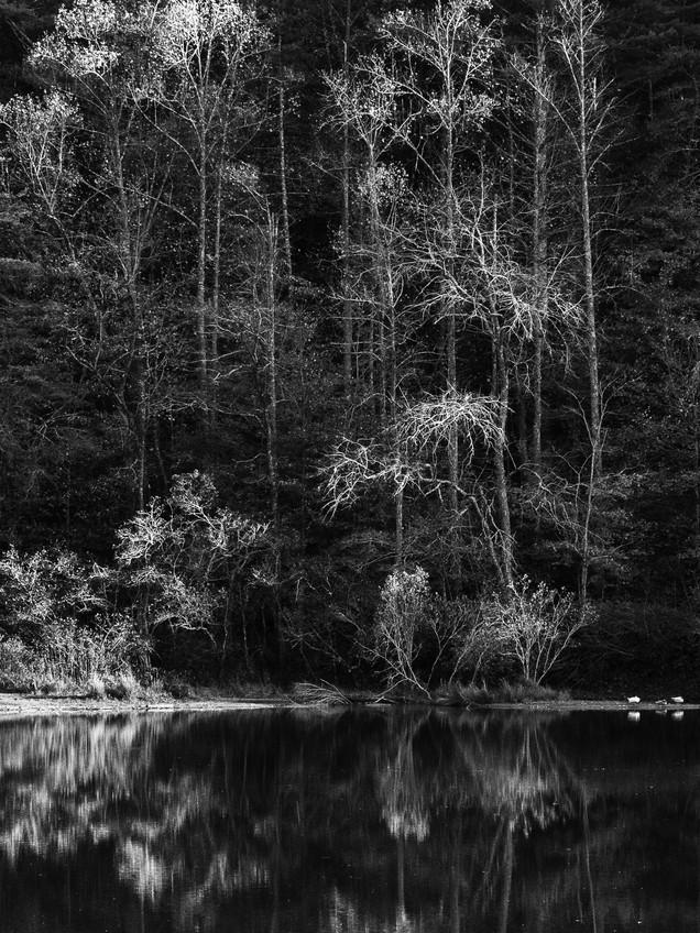 Black Mountain Lake
