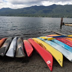Quinault Lake