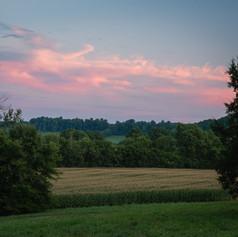 Sunset over Cornfields