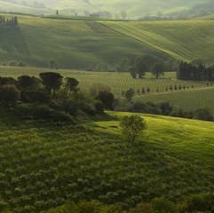 Tuscany at Dusk