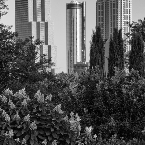 Downtown from Oakland Cemetery.jpg