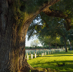 Chalmers National Military Cemetery