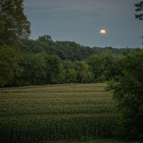 Moon Over Tennessee