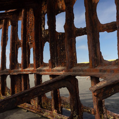 Detail, Wreck of the Peter Iredale
