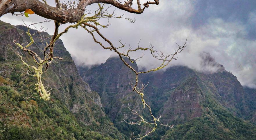 Madeirai látkép - TÜRKIZ Fotó